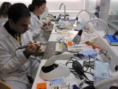 Prácticas en laboratorio